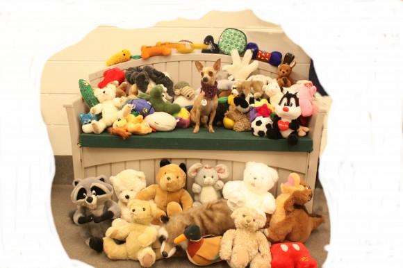 Bpa free teething toys
