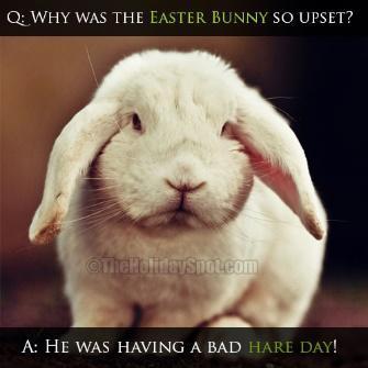 Best Easter Jokes   Easter Jokes for Kids   Easter Jokes and Riddles